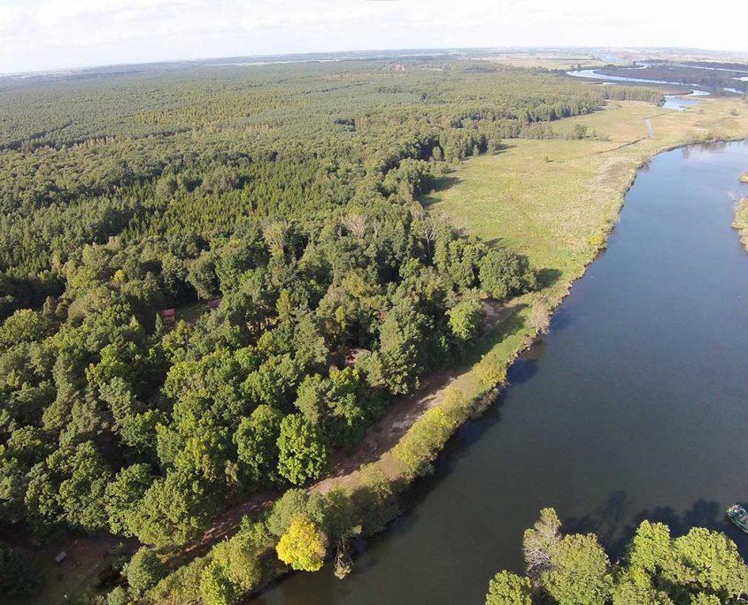 Links im Wald befindet sich das Gelände der Wildnisschule