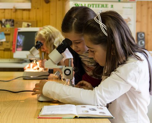 Kinder am Mikroskop im Nationalparklabor