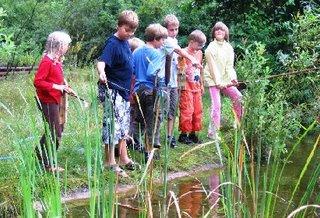 Teich auf den Gelände der Wildnisschule.
